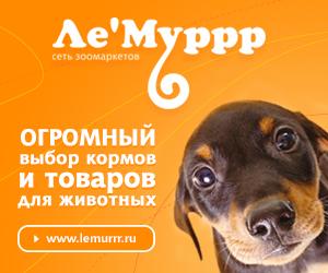 lemurrr