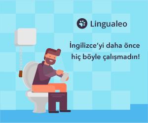 Lingualeo Many GEOs