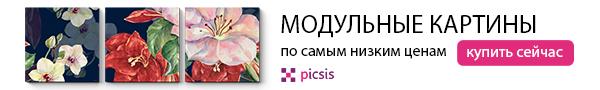 Picsis1
