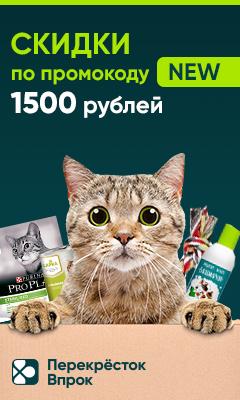 Vprok.ru