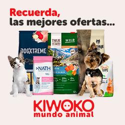 Kiwoko [CPS] ES
