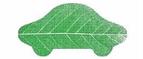 Зеленая Карта RU CPS