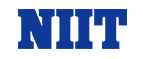NIIT SMP (CPL) IN